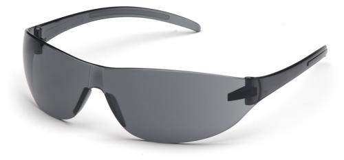 Schutzbrille mit grauen Scheiben /Fassung grau